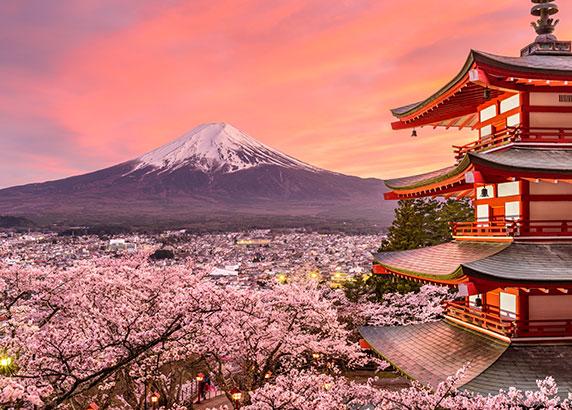 Oogverblindend uitzicht in Tokio