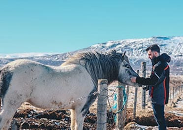 Incentive Reizen IJsland